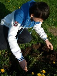 Dzień niebieski - sadzenie drzewek