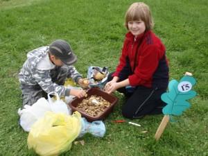 ziemniak 2008 062